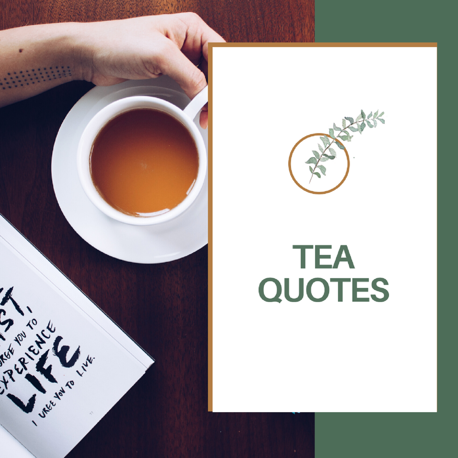 100 Amazing Tea Quotes That You Must Know??